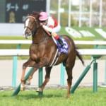 【競馬】大阪杯の枠順が確定!ブラストワンピースは5枠7番に