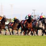 本日開催の重賞レースは金鯱賞&フィリーズレビュー!