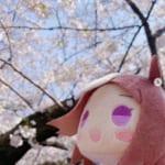 【ウマ娘】お花見スペちゃんがサイゲームス公式インスタグラムに登場