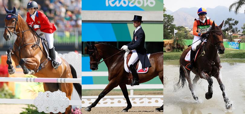 馬術】2020年東京オリンピックには馬術競技もあるよ! | ウマ娘攻略まとめ速報