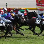 本日開催の重賞レースは日本ダービー&目黒記念