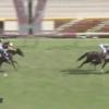 ラヴズオンリーユーが優駿牝馬をレコードで勝利!13年ぶり無敗のオークス馬