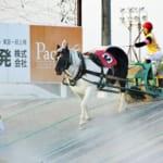 牛にしか見えないばん馬・モノクロチャン引退レースレポが届いたよ!