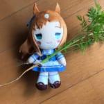 カンリニンのニンジン育成日記④「猫とニンジンと私」