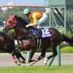 第60回宝塚記念の想定馬と想定騎手が発表