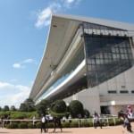 京都競馬場が改修工事のため20年11月~23年3月まで休止へ