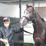 ゴルシ産駒サトノゴールドのデビューは14日に!鞍上は武豊騎手