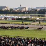 台風の影響により東京競馬場は土日とも開催中止