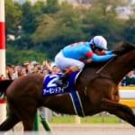 アーモンドアイ次走はJCか香港!有馬記念は回避か