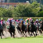 管理人がオススメしたい優良競馬予想サイト7つをランキング形式で紹介!