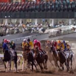 【ウマ娘】地方馬はよほど有名な競走馬では無い限り実装は難しい?