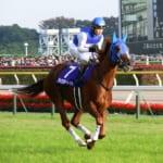 【競馬】別の馬と名前が混同しやすい競走馬は?これは間違えるかもしれない