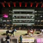 【競馬】大井競馬場のイルミネーションがとても綺麗だと話題に!夜の競馬場は良い雰囲気