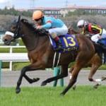 【競馬】調教技術などが上がったから強い牝馬が増えてきたの?