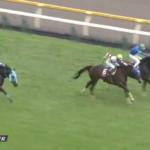 【競馬】ラヴアンドポップが東京ハイジャンプを制覇!10歳馬であるオジュウチョウサンは3着健闘