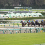 【競馬】レースの勝ち負けが極端な馬はいるのだろうか?